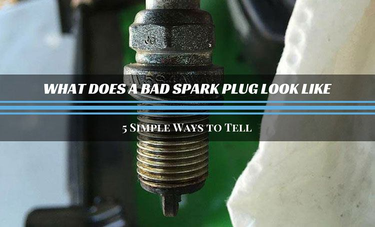 What Does A Bad Spark Plug Look Like? 5 Simple Ways To Tell
